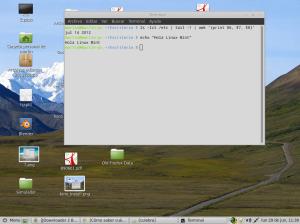 Consola de Linux con la info de mi sistema